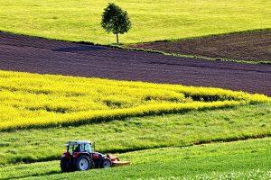 Rozwój rolnictwa